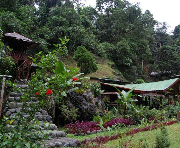 Sumatra Bukit Lawang