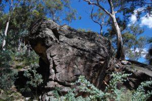 carnarvon gorge np