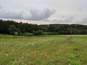 Malé Karpaty - Pod Lipovým vrchom